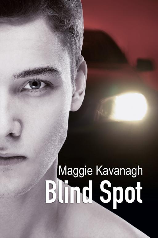 BlindSpotCover_MK.jpg